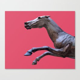 HORSE ON PINK Canvas Print