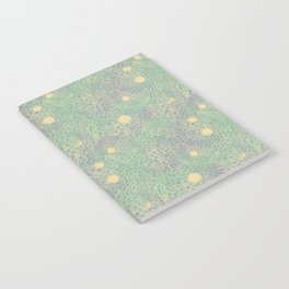 mox Notebook