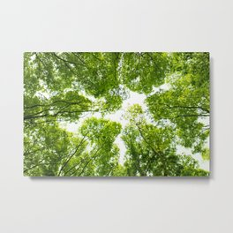 New green leaves Metal Print