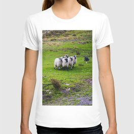 The Sheep Dogs T-shirt