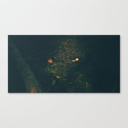 Someone Killed This Mushroom Canvas Print