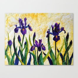 Watercolor Wild Iris on Wrinkled Paper Canvas Print