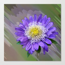 blue violet flower Canvas Print
