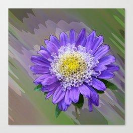 blue violet flower Canvas Print