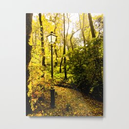 Street Light in the Forest Metal Print
