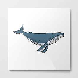 Humpback Whale Color Drawing Metal Print