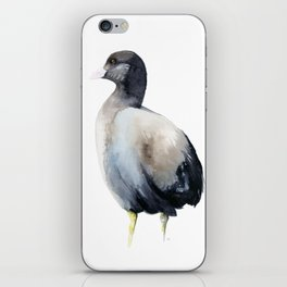 coot iPhone Skin
