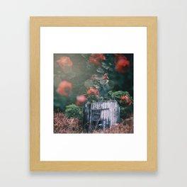 Abandoned Roses Framed Art Print