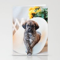puppies Stationery Cards featuring Puppies 2 by Photography By SidD