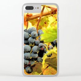 Grape Vines in Autumn Clear iPhone Case