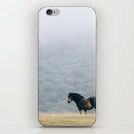 Black Beauty iPhone Skin
