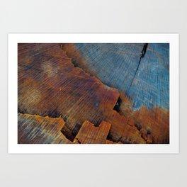 Colored Wood Art Print