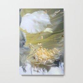 Cactus Flower - Fluff N Stuff Metal Print