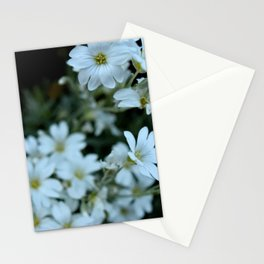 Duart Daisies Stationery Cards