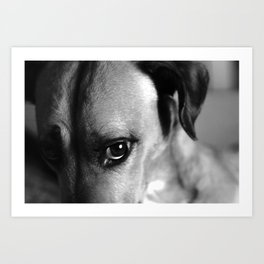 Guilty As Charged Art Print