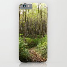 trail in the woods Slim Case iPhone 6s