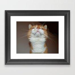 from underneath Framed Art Print