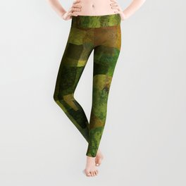 Dorado Verdiso and Butterfly Leggings