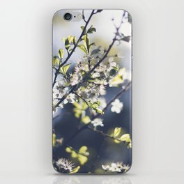 Backlight Blooms iPhone Skin