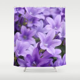 DREAMY - Purple flowers - Bellflower in the sun #1 Shower Curtain