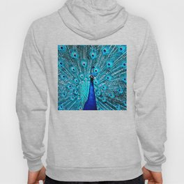 Peacock  Blue 11 Hoody