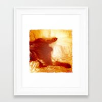 yorkie Framed Art Prints featuring Yorkie Legs by Le Coup de Foudre