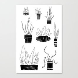 Well Watered Canvas Print
