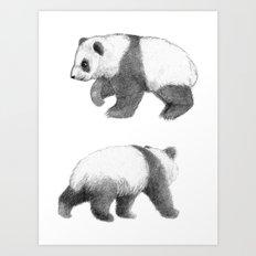 Walking Panda sketchSK062 Art Print