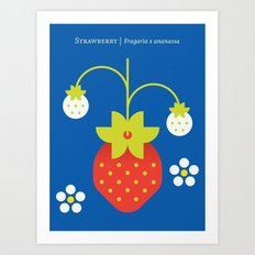 Fruit: Strawberry Art Print