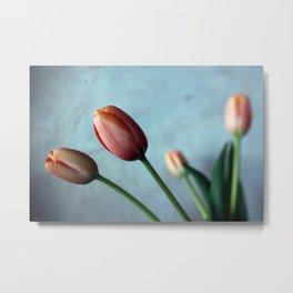 tulips #2 Metal Print