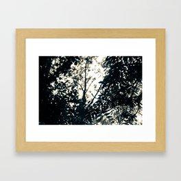 Sun Drops Framed Art Print
