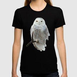 Snowy in the Wind (Snowy Owl) T-shirt
