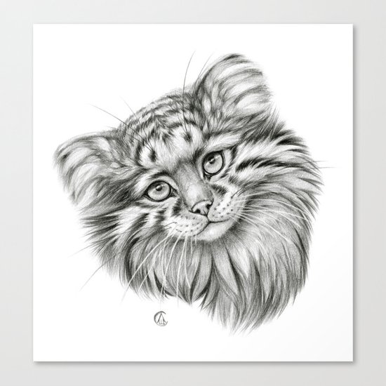 Pallas's Cat G2012-51 Canvas Print