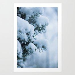 Winter Branches 1 Art Print