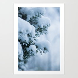 Winter Branches 1 Art Print