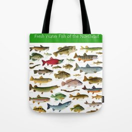 Illustrated Northeast Game Fish Identification Chart Tote Bag