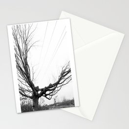 Between the lines: Nature vrs Human Stationery Cards