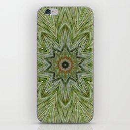 White pine kaleidoscope/mandala II iPhone Skin