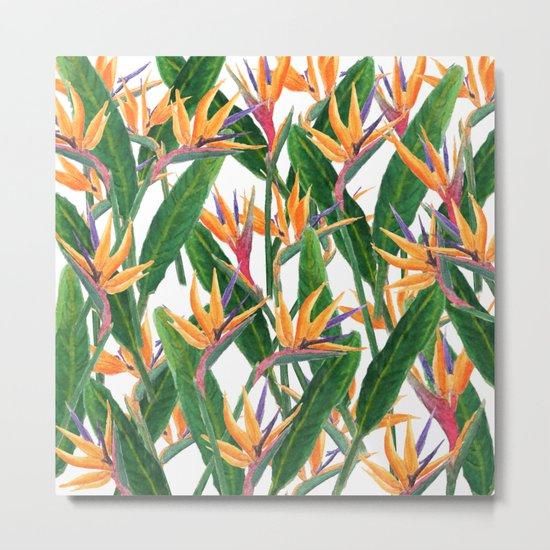 bird of paradise pattern Metal Print