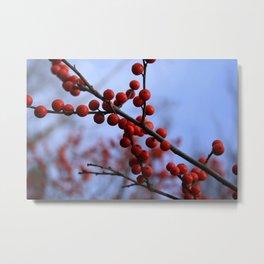 Red Winterberries Metal Print
