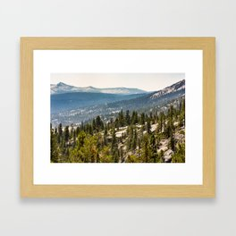 High Sierra Forest Framed Art Print