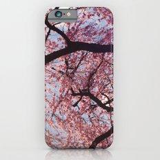 Joie Slim Case iPhone 6s