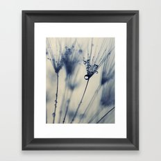dandelion blue III Framed Art Print