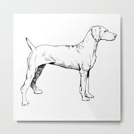 Viszla Dog Ink Drawing Metal Print