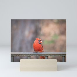 Cardinals best side Mini Art Print