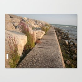 Walk along the water Canvas Print