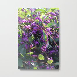 Christy's Garden 4 Metal Print