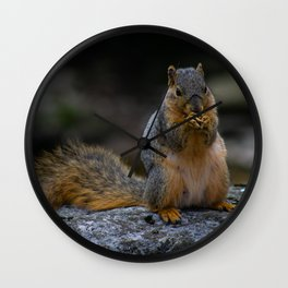 Perched Squirrel Eating a Nut Wall Clock