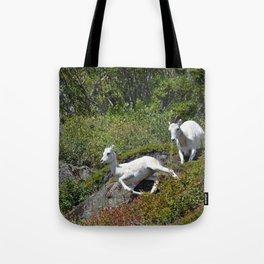 Ewe & Lamb Dall Sheep - II Tote Bag