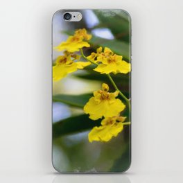 Yellow Orchids iPhone Skin